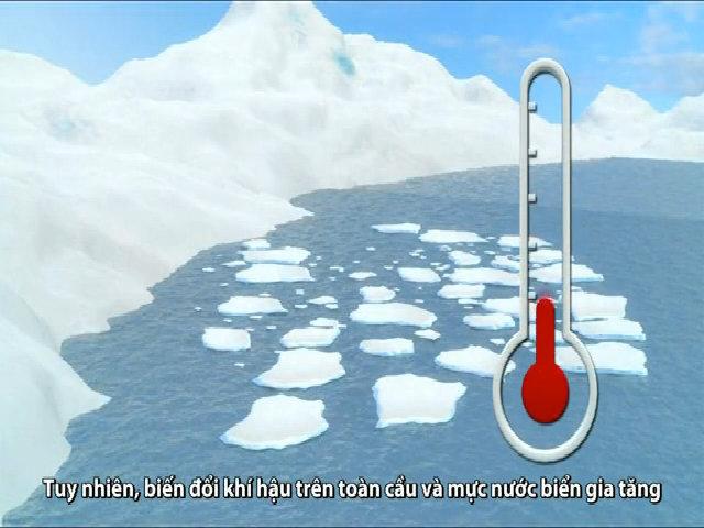 Thủ phạm làm tan chảy thềm băng Nam Cực từ bên dưới