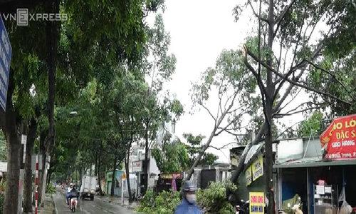 Vùng ven Sài Gòn vẫn ngổn ngang sau cơn mưa giông tối qua