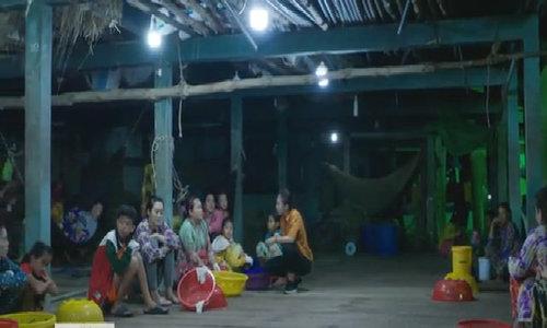 Nghề bóc tôm khô về đêm ở Cà Mau