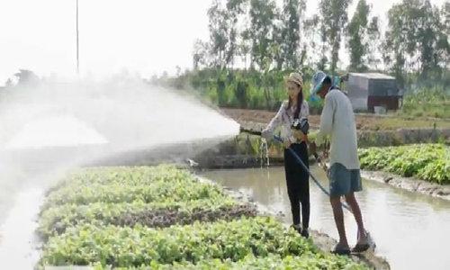 Nông dân tự chế máy cắt cỏ thành vòi tưới rau