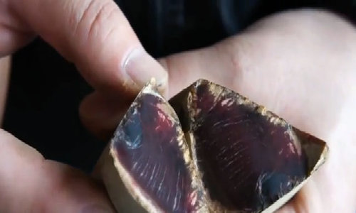 Bí quyết sản xuất thanh gỗ hóa ngọc - cá ngừ khô Bonito