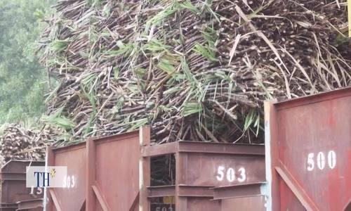 Cách xử lý chất thải của nhà máy sản xuất 85.000 tấn đường