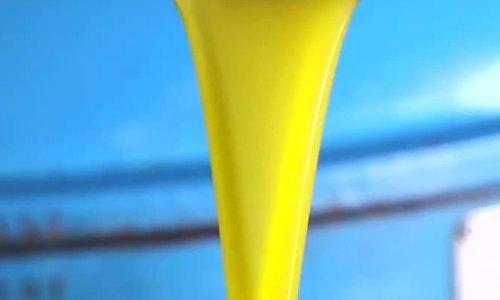 Dây chuyền ép 800 lít dầu ôliu mỗi ngày