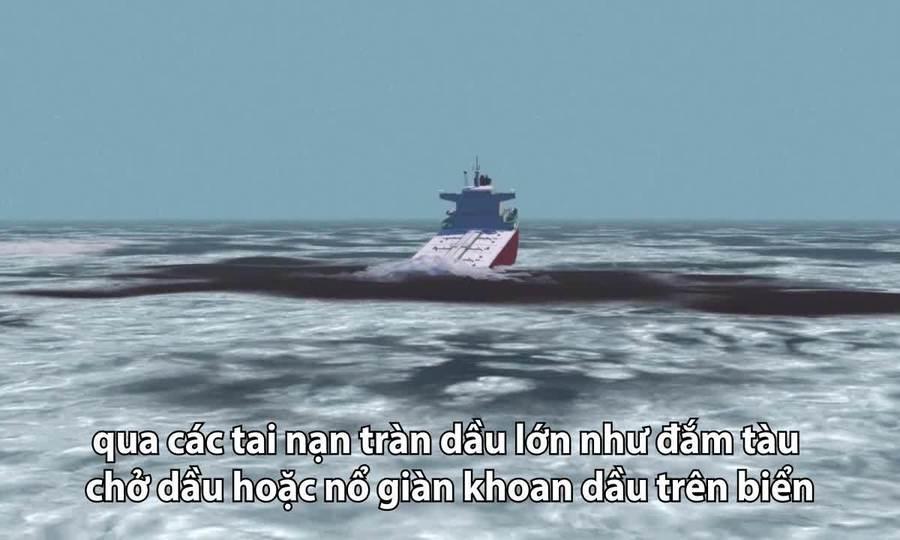 Thảm họa khi đắm tàu chở dầu trên biển