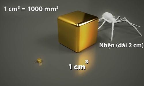 Đồ họa 3D so sánh các đơn vị đo chiều dài, diện tích, thể tích