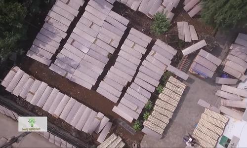 Làng nghề Tống Buồng sản xuất 2 tấn mì gạo mỗi ngày