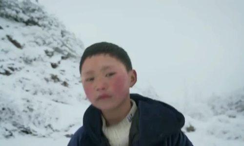 'Cậu bé tóc băng' rời trường mới sau một tuần nhập học