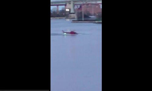 Trực thăng rơi xuống sông ở Mỹ