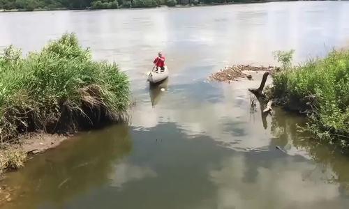Người đàn ông hào hứng khi bị đàn cá nhảy lên thuyền