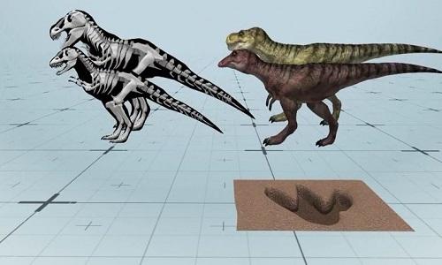 Dấu chân khủng long 170 triệu năm trên bờ biển Scotland