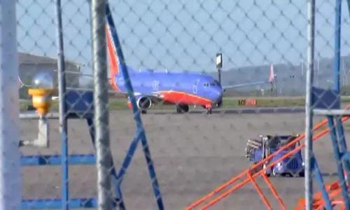 Máy bay của Southwest Airlines lại bị chim tấn công động cơ