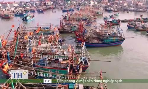 Nước mắm Bình Định