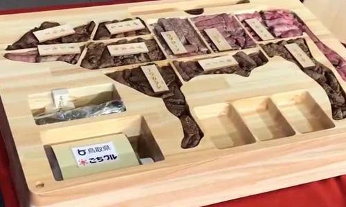 Hộp cơm bento kiểu Nhật giá hơn 60 triệu đồng