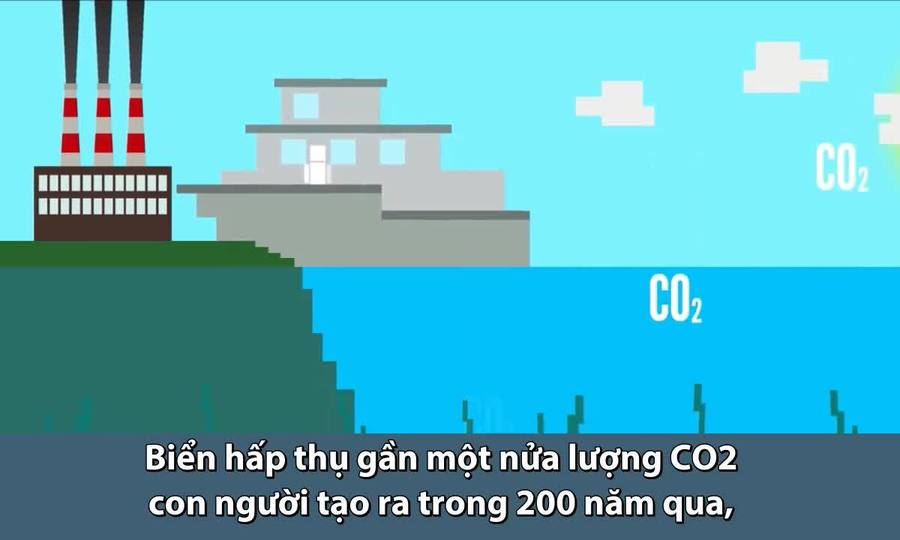 Chuyện xảy ra nếu toàn bộ đại dương biến mất
