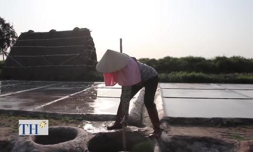 Khám phá nghề làm muối sạch phơi cát Nam Định