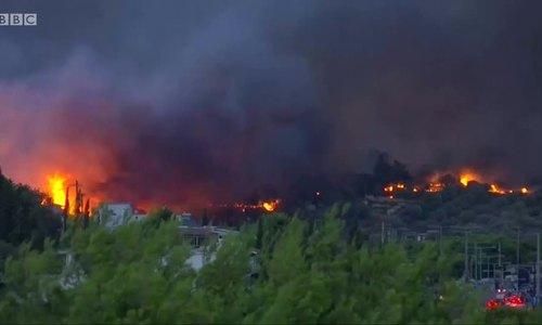 Ít nhất 50 người thiệt mạng trong vụ cháy rừng ở Hy Lạp