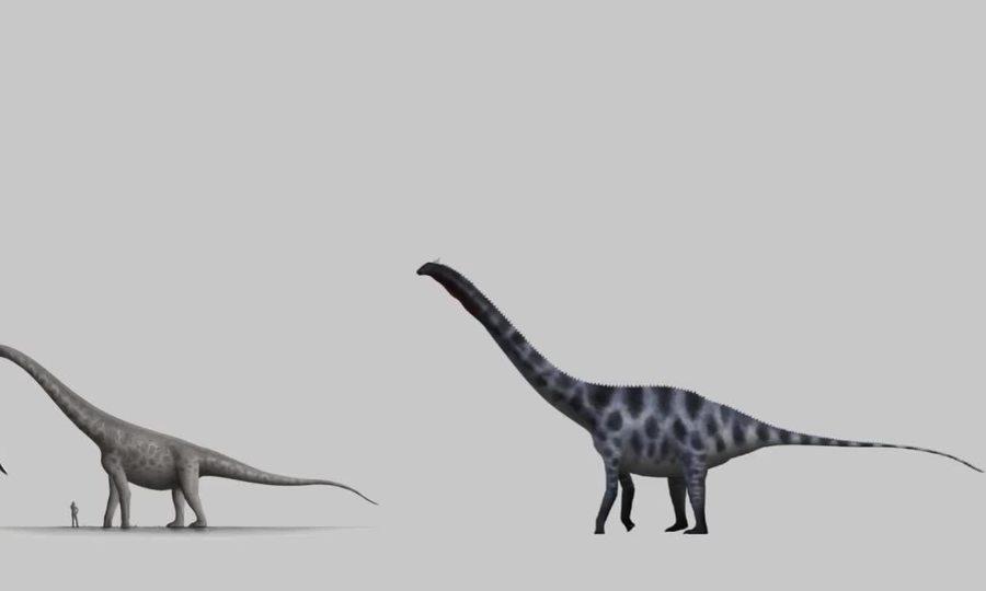So sánh kích thước các loài động vật lớn nhất thời tiền sử