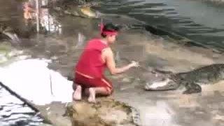 Diễn viên xiếc với cá sấu thót tim vì đồng nghiệp vụng về