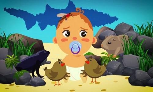 Những động vật phải đối mặt tử thần khi vừa chào đời