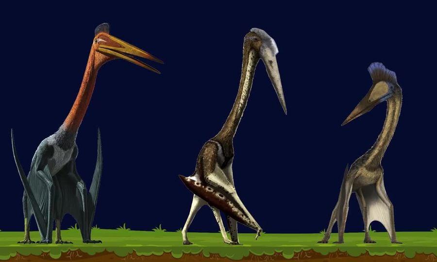 15 loài thằn lằn bay lớn nhất từng tồn tại trên Trái Đất