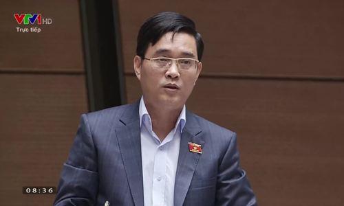 Đại biểu Hoàng Quảng Hàm