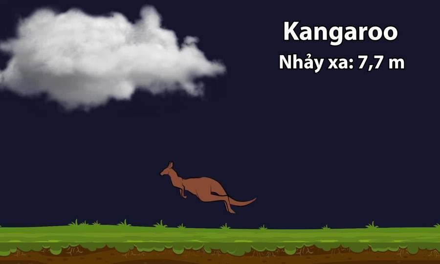 Kangaroo nhảy xa đến đâu trên các thiên thể thuộc hệ Mặt Trời?