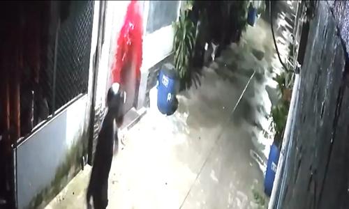 Nạn 'khủng bố' bằng sơn, mắm tôm ở Sài Gòn