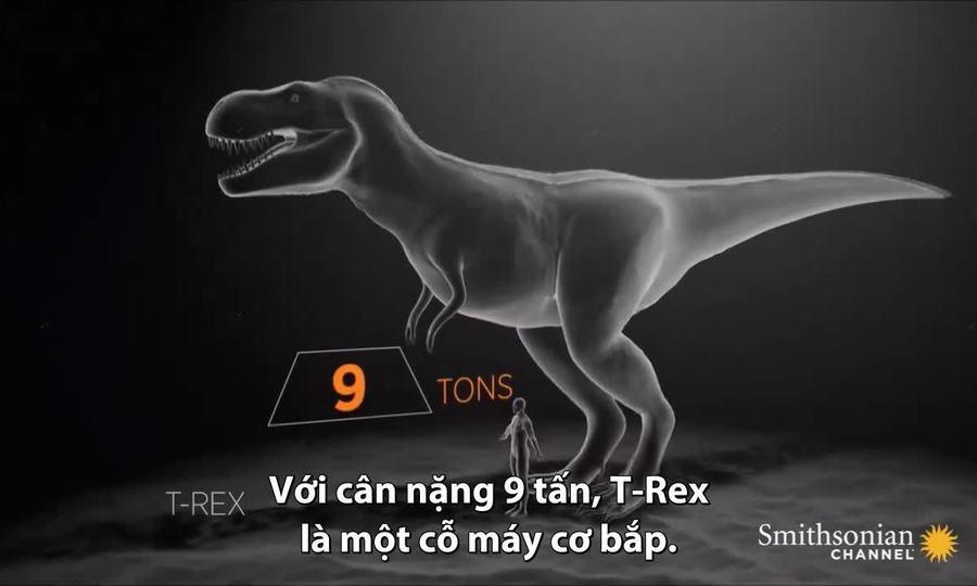 Lực cắn giúp khủng long bạo chúa hạ gục con mồi 5 tấn