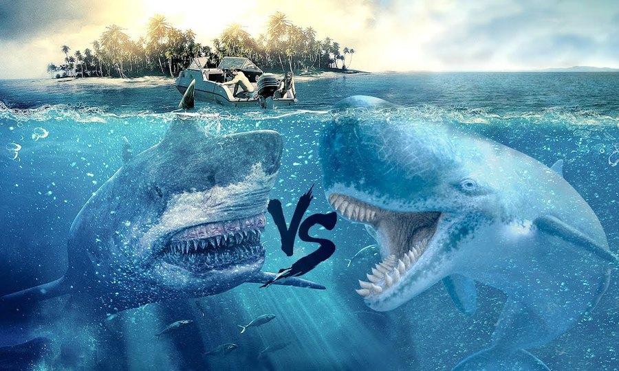 Quái vật Megalodon so với những sinh vật biển lớn nhất