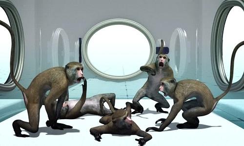Quá trình nhân bản 5 con khỉ biến đổi gene ở Trung Quốc