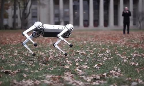 Robot 4 chân của Mỹ trình diễn khả năng nhảy lộn ngược