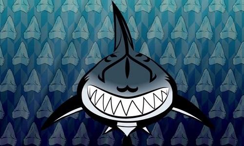 Cấu tạo cơ thể biến cá mập thành sát thủ săn mồi hàng đầu