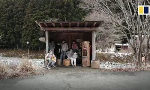 Hệ lụy từ tình trạng suy giảm dân số tại Nhật Bản - ảnh 1