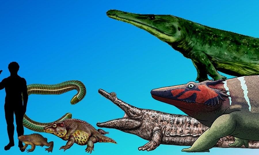 Những loài lưỡng cư lớn nhất từng tồn tại trên Trái Đất