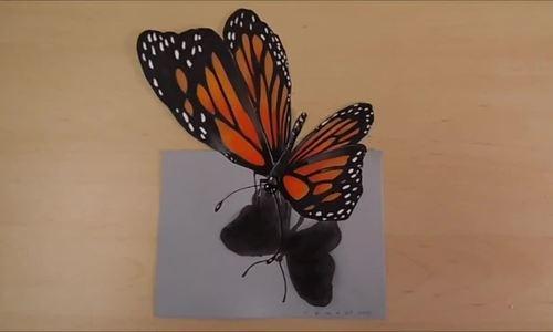 Cách vẽ con bướm bay lượn trên giấy
