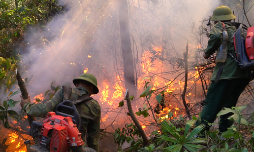 More than 500 people have extinguished the forest fire on the Hong Linh mountain