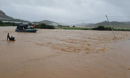 3 người chết do mưa lũ tại Tây Nguyên