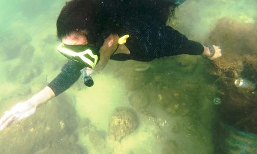 Tình nguyện viên lặn vớt rác dưới biển - ảnh 1