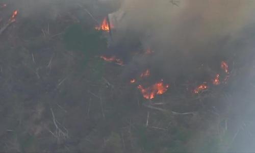 Tổng thống Brazil chỉ trích các nước khi rừng Amazon cháy kỷ lục - ảnh 2