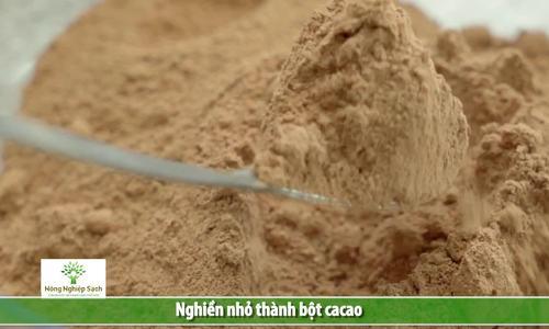 Quá trình sản xuất bột cacao