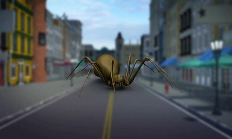 Tìm thấy loài nhện độc mới có thể làm thịt thối rữa
