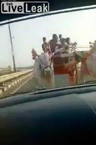 Bò kéo xe húc ôtô chạy ngược chiều