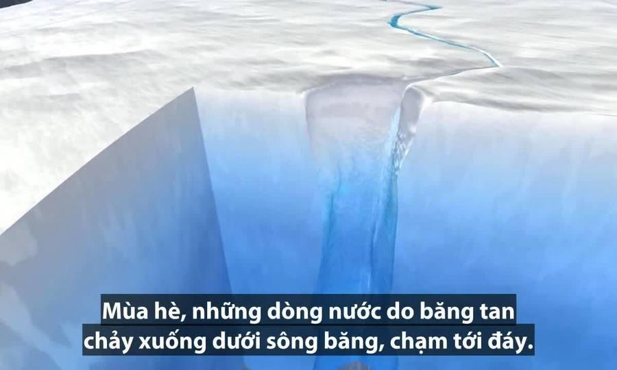 Các tảng băng trôi tách ra từ sông băng như thế nào?