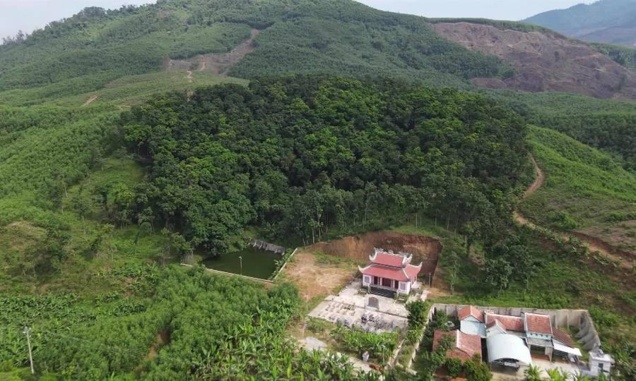 Nông dân trồng rừng gỗ lim để lấy nấm